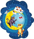 Kittens playing on the moon. Three kittens playing on yellow moon with red bow and mouse Stock Photo