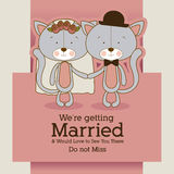 Kitties design Royalty Free Stock Photo