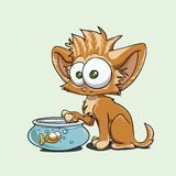 Kitty vector illustration