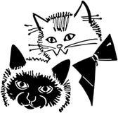 Kitty Cats Royalty Free Stock Photography