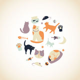 Kitty Collection Royalty Free Stock Image