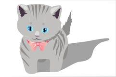 Kitty. Cute tabby kitten vector illustration Stock Photo