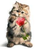 Kitty dà rosa royalty illustrazione gratis