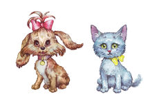 Kitty and doggy isolated hand painted watercolor illustration Stock Photos