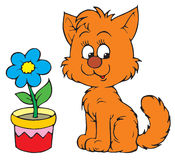 Kitty and flower (vector clip- Stock Photos