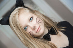 Kitty. Girl in a cat costume Royalty Free Stock Images