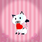 Kitty with heart Stock Images