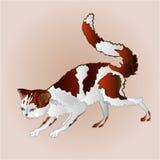 Kitty on the hunt vector. Kitty on the hunt three color pussy feline vector illustration Stock Photos
