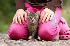 Kitty between legs Royalty Free Stock Photography