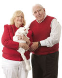 Kitty Loving Seniors Royalty-vrije Stock Foto's