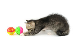 Kitty playing with balls Royalty Free Stock Images
