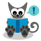 Kitty reading a book Royalty Free Stock Images