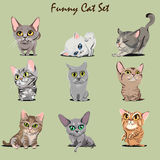 Kitty Set drôle illustration stock