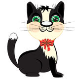 Kitty with small bow Royalty Free Stock Photos