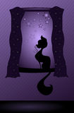 Kitty in the window. Illustration of a kitty in the window at night sitting on a window sill stock illustration