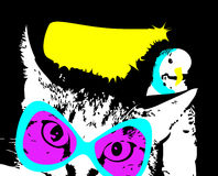 Kitty y loro, amigos foto de archivo