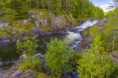 Kivach Falls. Is a 10.7-m-high cascade waterfall in Russia. It is located on the Suna River in the Kondopoga District, Republic of Karelia and gives its name to Royalty Free Stock Photos