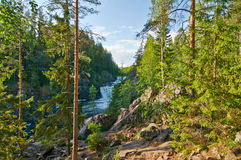 Kivach falls in the summer. Karelia, Russia Stock Photos