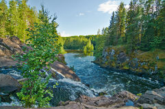 Kivach spada w lecie Karelia, Rosja Zdjęcia Stock