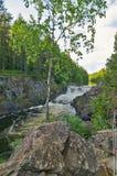Kivach spada w lecie Karelia, Rosja Fotografia Stock