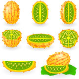 Kiwano Photo stock