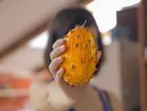Kiwano Fruit Stock Images