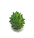 Kiwano or Horned Melon (Cucumis metuliferus). On white background Stock Images