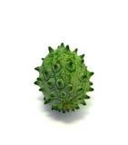 Kiwano ou melon à cornes (metuliferus de Cucumis) Images stock