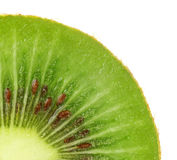 Kiwi. Fruit with macro lens. Quarter Stock Images