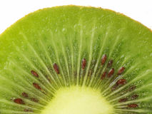 Kiwi. Fruit with macro lens Royalty Free Stock Photo
