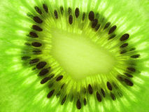 Kiwi. Fruit with macro lens. Center of Transparent Slice Royalty Free Stock Photos