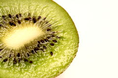 Kiwi. Isolated over the white background stock images