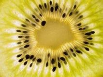 Kiwi Fotografie Stock