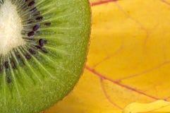 Kiwi Stock Afbeelding