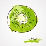 Kiwi vektor illustrationer