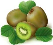 Kiwi affettato Immagine Stock