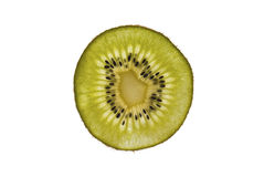 Kiwi au-dessus du fond blanc photographie stock libre de droits