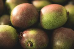 A close up of Kiwi Berries royalty free stock images