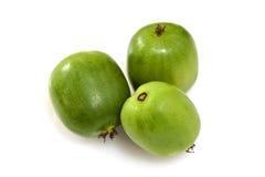 Kiwi Berry or Actinidia arguta Royalty Free Stock Images