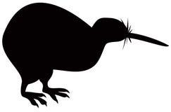 Kiwi bird Royalty Free Stock Images
