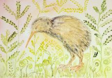 Kiwi bird with background of varen and leaves. The dabbing technique near the edges gives a soft focus effect due to the altered surface roughness of the paper Royalty Free Stock Images