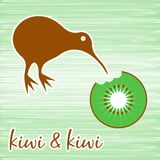 Kiwi bird stock illustration