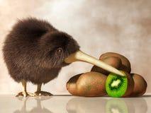 Kiwi Bird, Kiwifruit vector illustratie