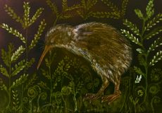 Kiwi bird in the night with background of varen and leaves. The dabbing technique near the edges gives a soft focus effect due to the altered surface roughness Royalty Free Stock Image