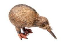 Kiwi bird toy. Isolated on the white background stock photos