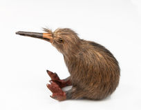 Kiwi bird toy. Sitting on the white background stock image