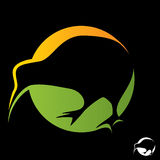 Kiwi bird vector. Kiwi bird symbol vector isolated in black background Royalty Free Stock Photos