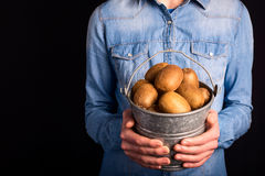 Kiwi bucket in hands Royalty Free Stock Photography