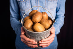Kiwi bucket in hands Royalty Free Stock Images