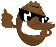 Cool Kiwi cartoon with sunglasses isolated Royalty Free Stock Photos